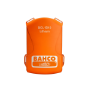 BATTERIE LITHIUM ION 1000WH